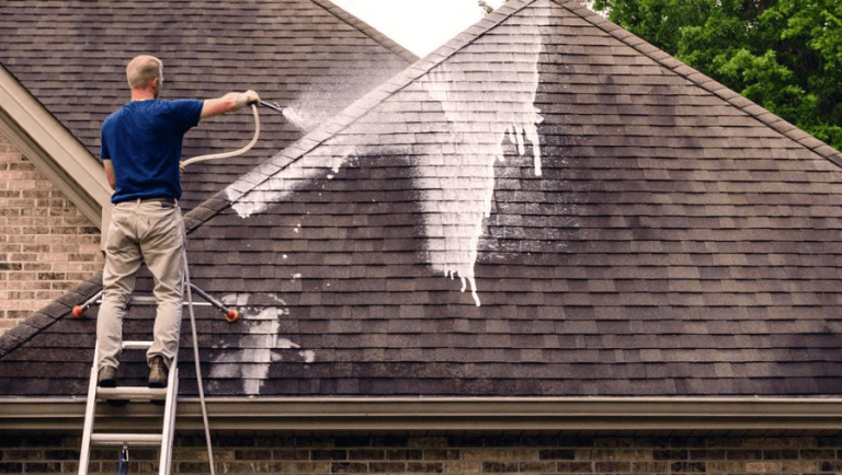 roof cleaning service x